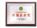 国美电器荣膺中国家电服务业多项大奖