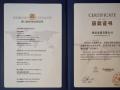 国美斩获亚洲品牌双奖 彰显企业品牌价值